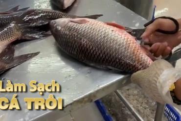 THẾ GIỚI CÁ | LÀM SẠCH CÁ TRÔI (CLEAN ROHU FISH)