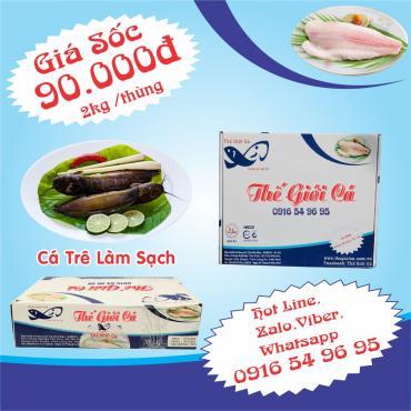 Cá Trê Làm Sạch (2KG/THÙNG)